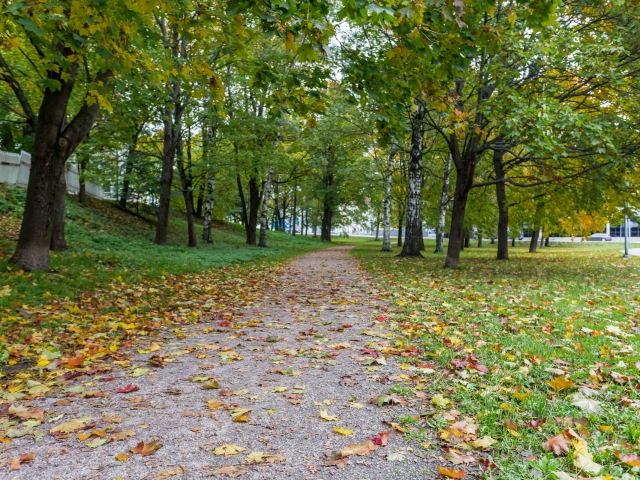 Puistikko Vellamonkatu Haukilahdenkatu risteys